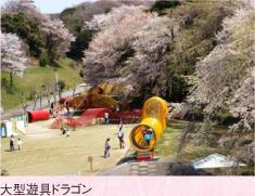 cherry_b_shidare_photo_01