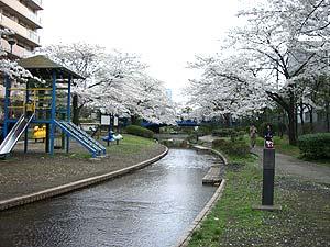 shinsui-05