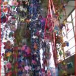 tanabata600